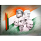 PAINTINGS ONLINE 'FREEDOM FIGHTERS'